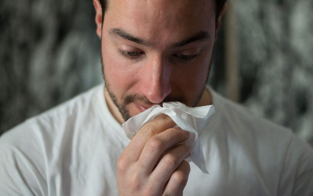 La alergia y las quercitinas